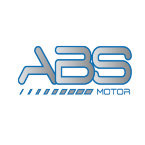 ABS motor